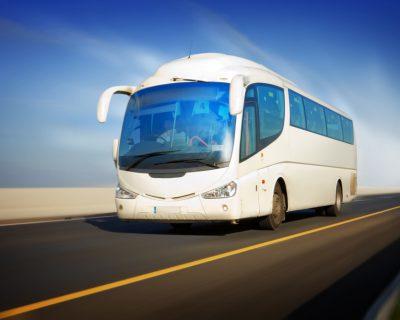 אוטובוסים חדשים ומפוארים